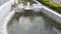Geometrische Becken - Bergmann Galabau